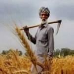 पीएम किसान: एक ही जोत पर 1 से ज्यादा लोग पा सकते हैं 6000 रु सालाना? योजना से जुड़ी खास बातें