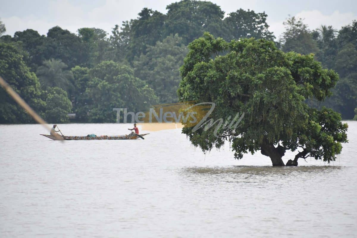 Assam flood: 4 more dead, toll touches 73