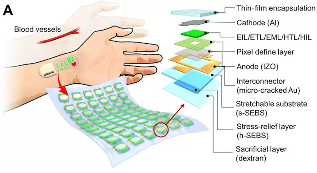 Samsung is working on a stretchable OLED display with biometric capability