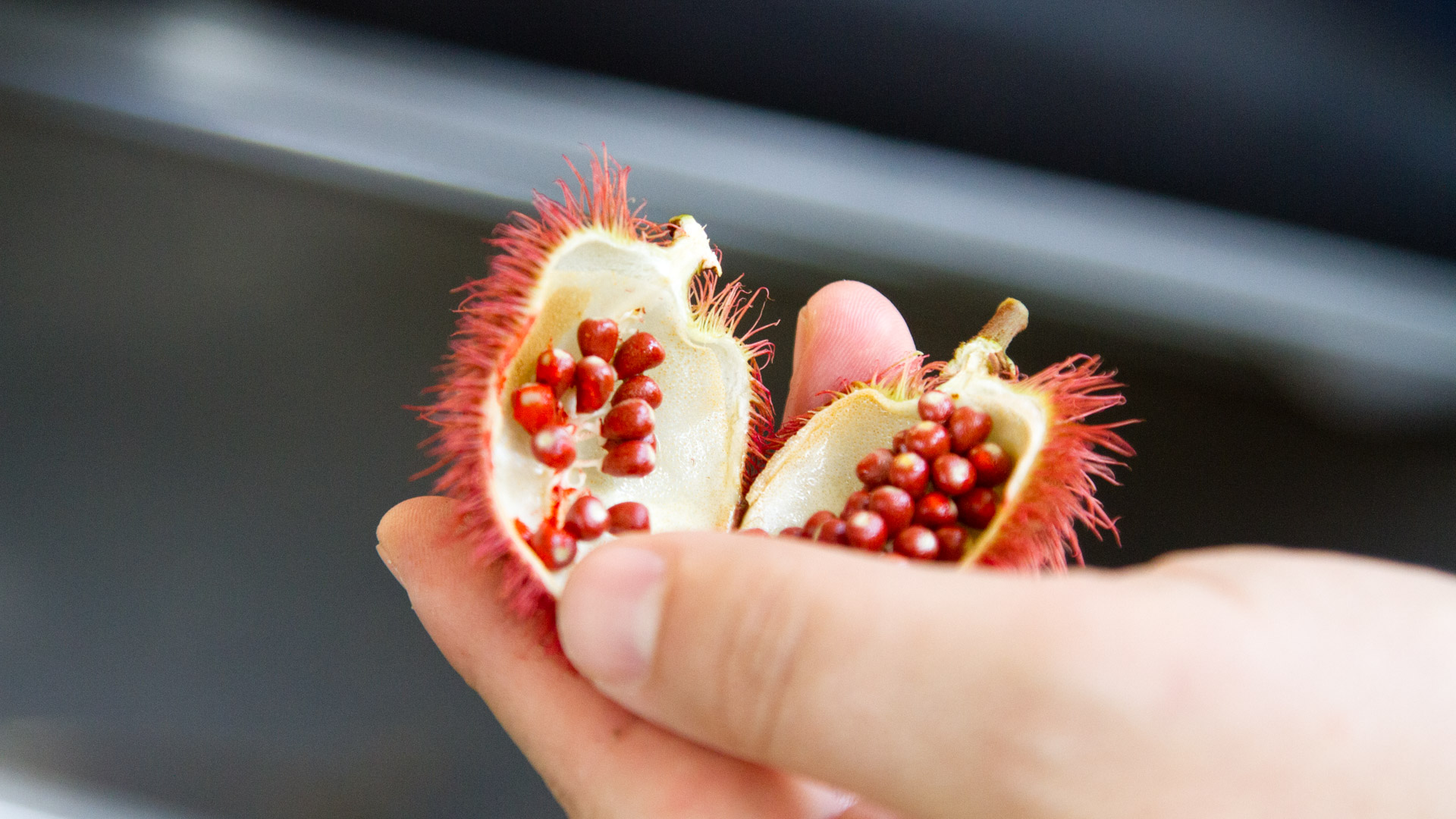Achiote seeds, also called annatto or bijol, are used for their bright red pigment.