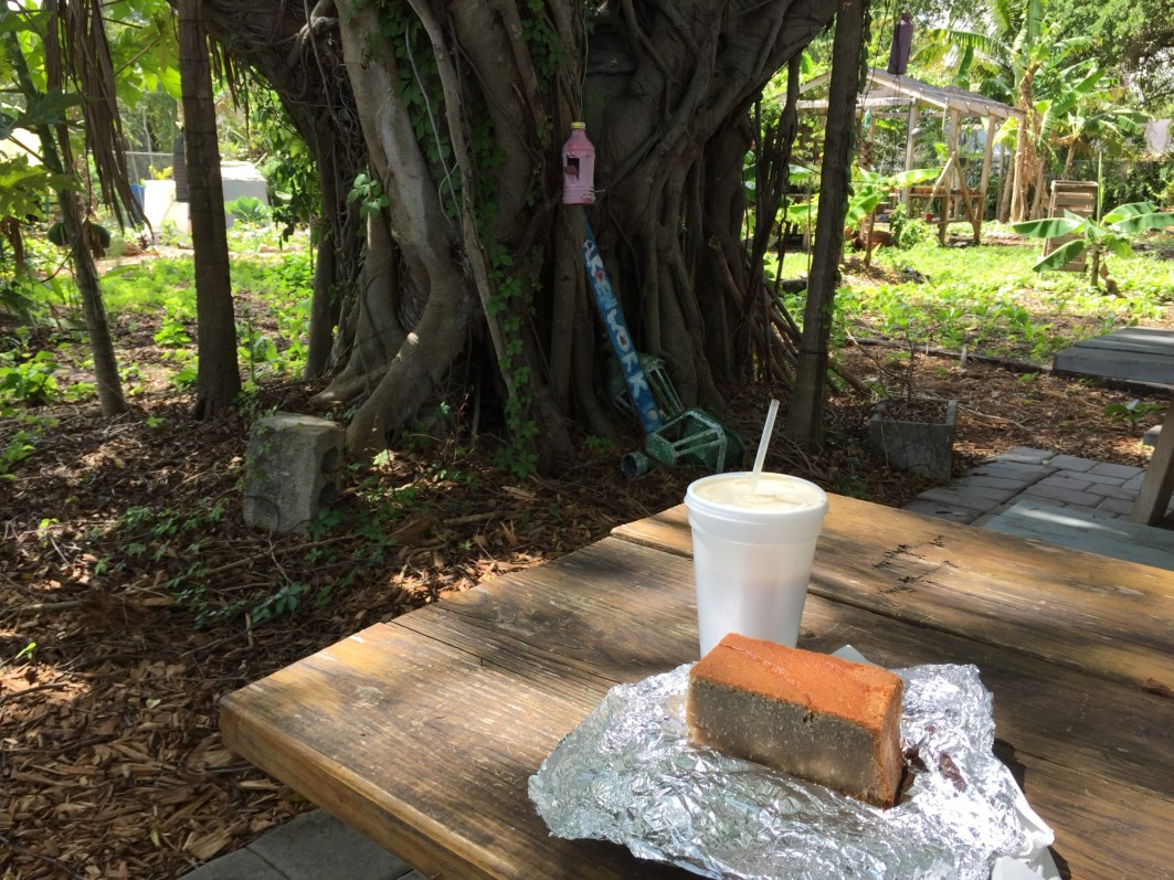 Taking a break in the shade with potato cake and corn milk from The New Florida Bakery in the Little Haiti Community Garden.