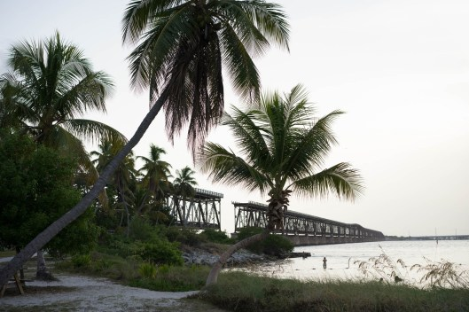 The abandoned Overseas Railroad Bridge from Bahia Honda State Park. A section was destroyed to make way for sailboats.