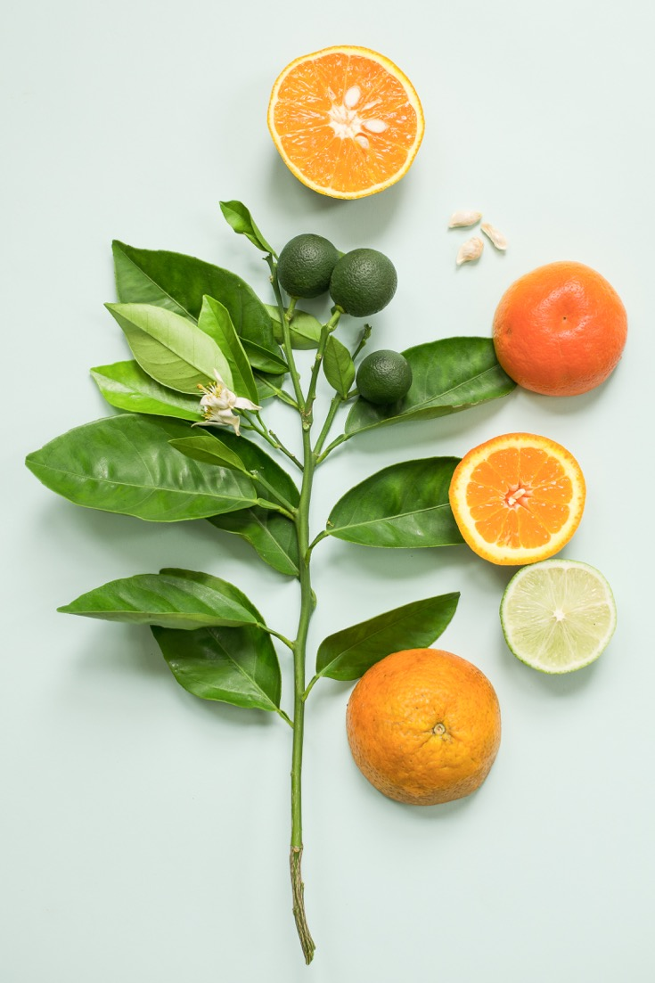 Citrus fruits are a Florida favorite. (Courtesy of Tiffany Noe)