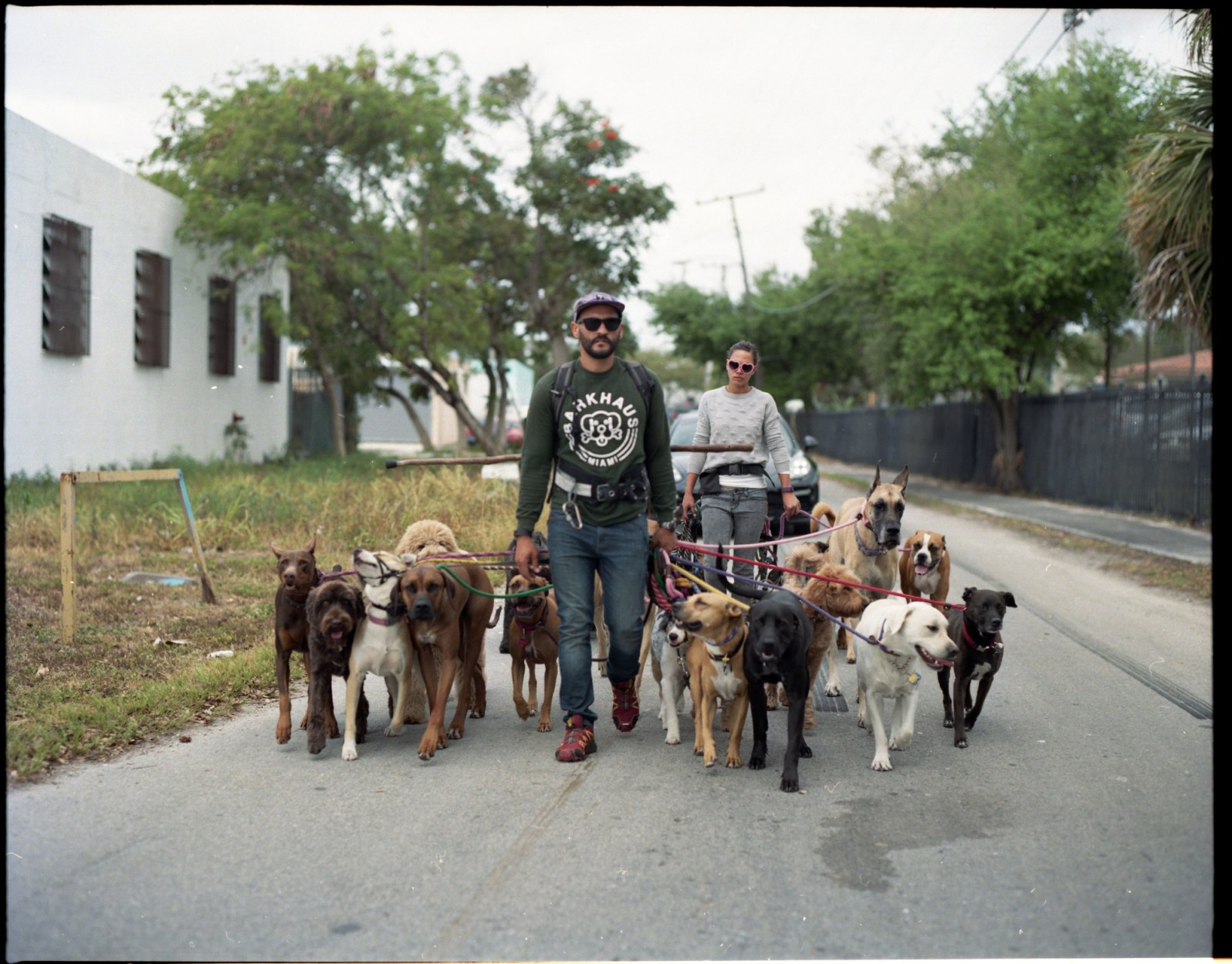 Barkhaus walking their dogs in Little River (Courtesy of @KatieSadiePhoto)