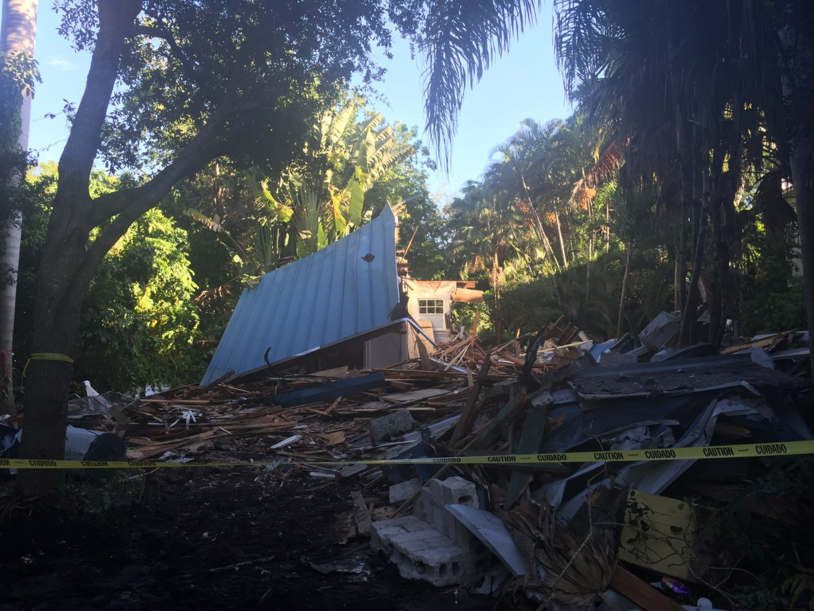The demolition of the Butterfly House Tree-lined pathway in Coconut Grove (Photo courtesy of Luke Fronefield)