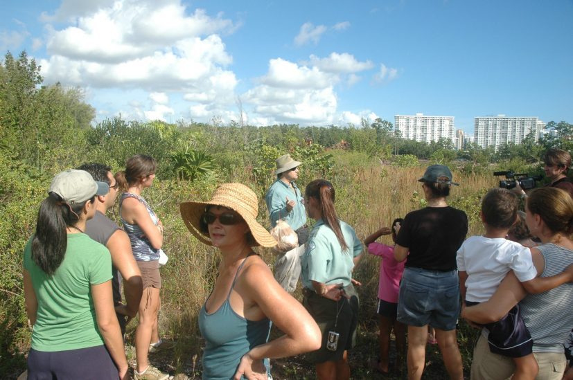 Collecting native plant seeds for Haiti's reforestation. The Urban Paradise Guild was one month old. 2008. (Photo by Bob Hewes)