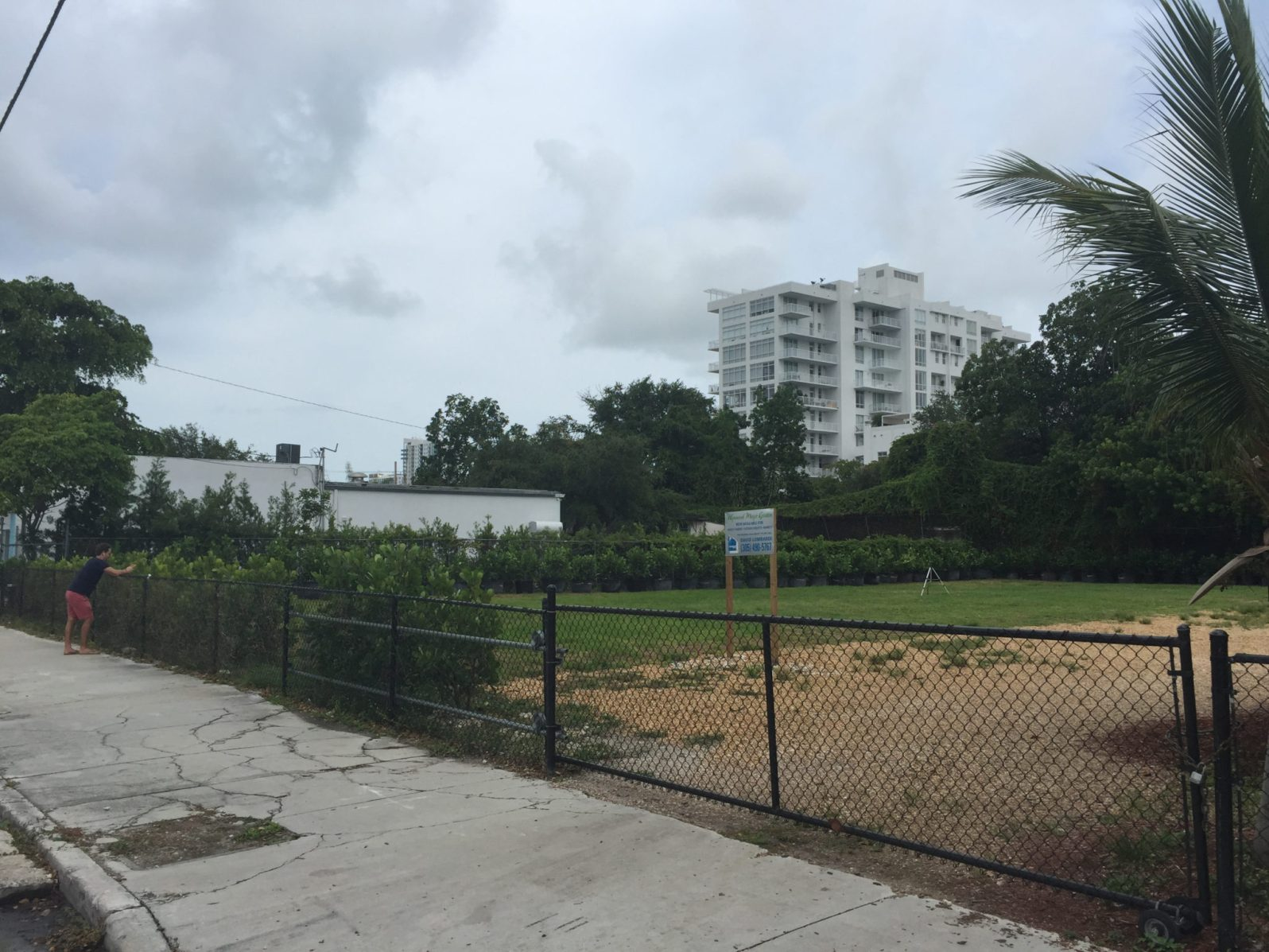 This is what the Wynwood Yard looked like when Della Heiman discovered it.