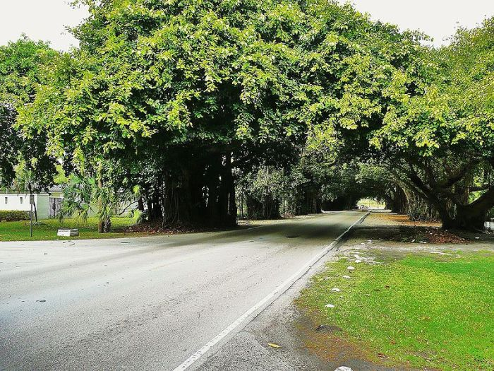 old cutler road