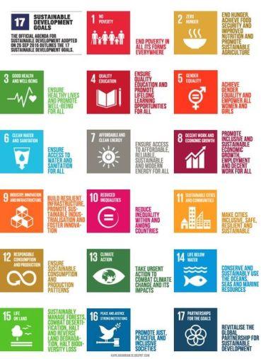 17 United Nations Sustainable Development Goals