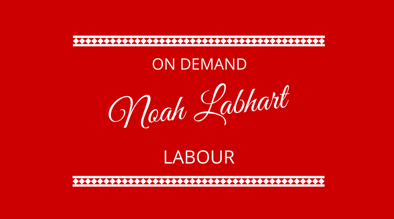 On Demand Labour with Noah Labhart on The Next 100 Days Podcast