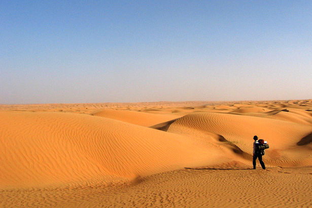 Endless dunes in the Wahiba Sands
