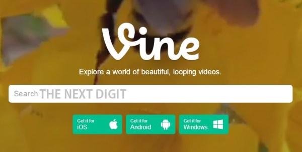 vine-search