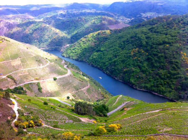 The River Sil flows through terraced land, which is part of the Ribiera Sacra wine region.