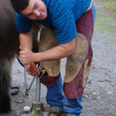 what-does-a-farrier-do-230×230