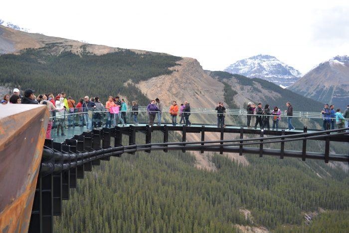 qué hacer y qué ver en la Icefields Parkway