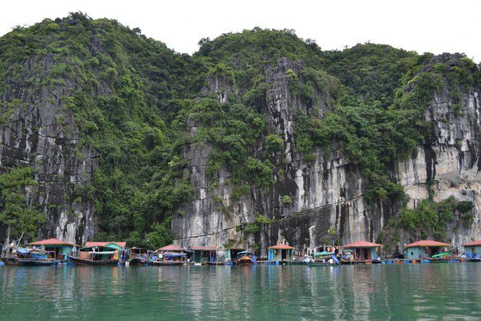 Must de Vietnam