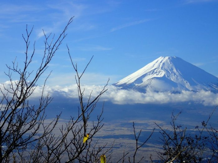 Excursiones imprescindibles desde Tokio