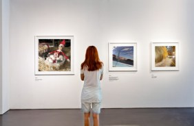 Kahlua-ZeroLikes-Exhibition