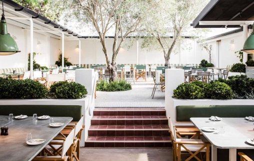 Tottis-restaurant-Sydney-AB5I3980