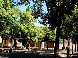 Patio de los Naranjos outside the Mezquita