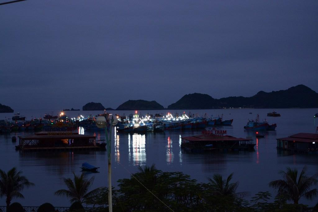 Cat Ba town port at night