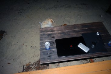 Night office at Wild Pasir Panjang beach
