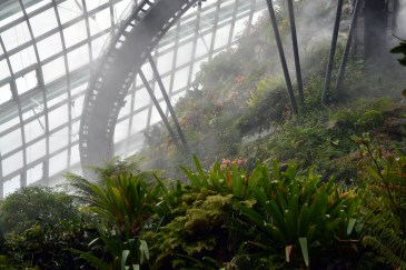 Around the Cloud Forest at the Gardens by the Bay, Singapore