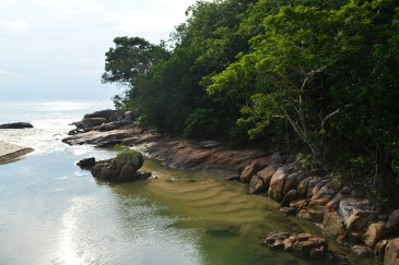 Hiking in Penang National Park, Malaysia
