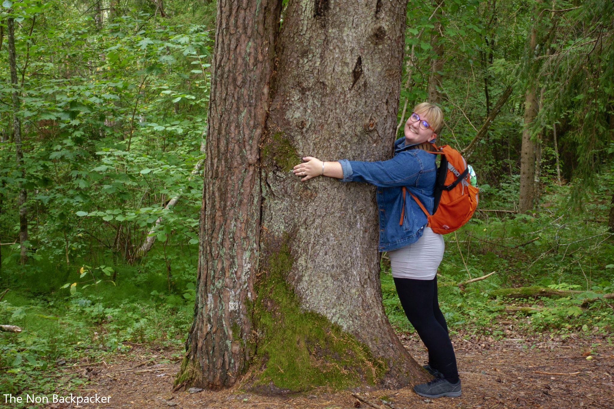 The Cirulisi Nature Trail Friendship Tree