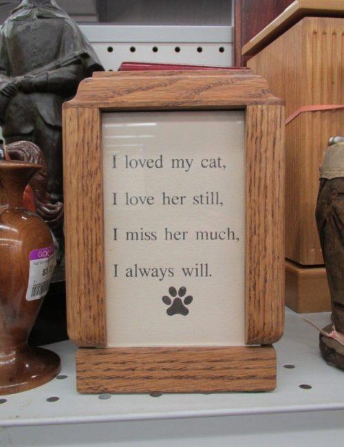 Cremated cat