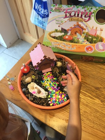 We made our own fairy garden.