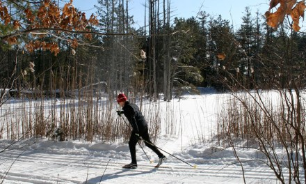 Surprising Ski Spots in SoutherN New England and New Jersey