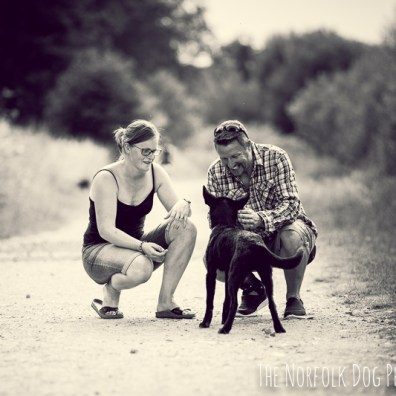 The-Norfolk-Dog-Photographer-0026