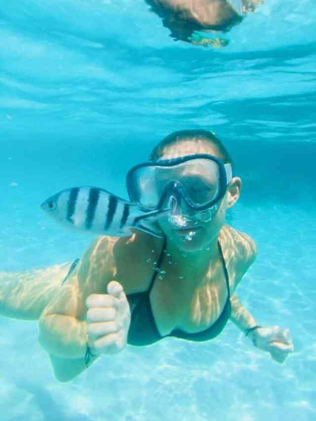 Best things to do in Koh Tao snorkelling