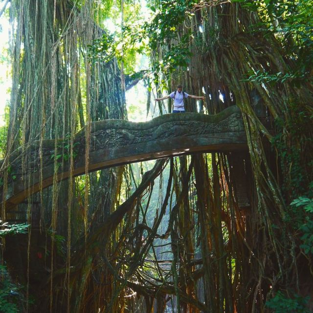 monkey forest in ubud, monkey forest bali, ubud bali monkey forest,monkey forest bali cost,ubud monkey forest bali ,sacred monkey forest bali ,bali ubud monkey forest ,monkey forest bali ubud,bali monkey forest ubud,monkey forest bali entrance fee