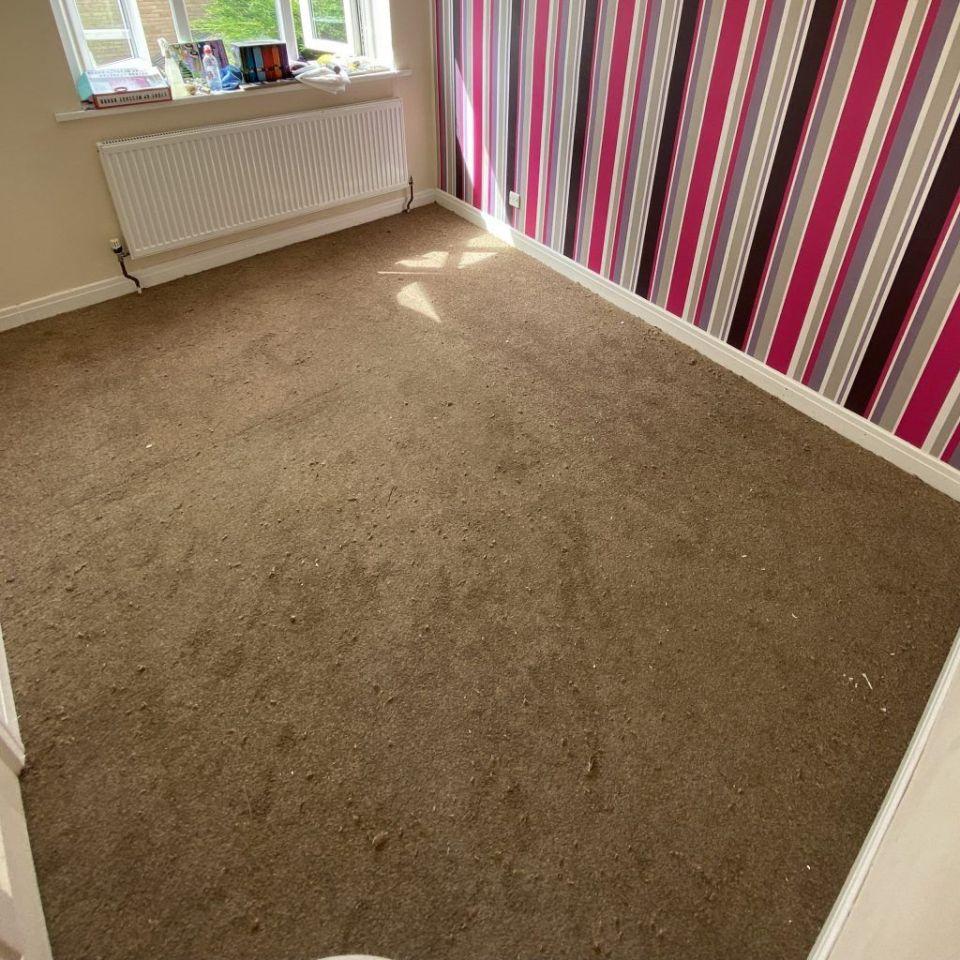 beige bedroom carpet