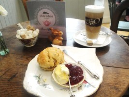 Scone with Clotted Cream and jam at White Rabbit