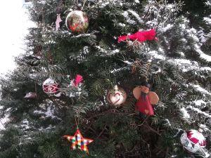 NE_Christmas Tree Sundrome