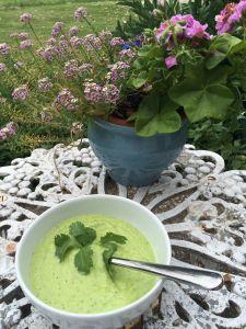 NE_Cucumber Soup Al Fresco