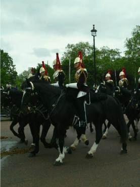 horse guards trooping the colour