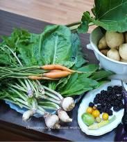 carrots & turnips