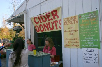 cider donuts from harvest moon farm orchard