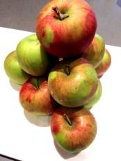 mick's apples for four and twenty blackbirds' salted apple caramel pie
