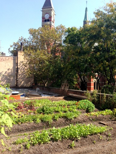 rooftop garden at rosemary's west village
