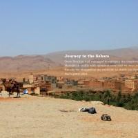 Journey to the Sahara
