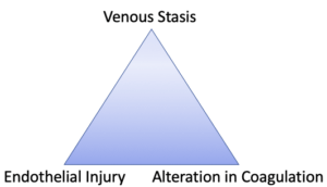 Pulmonary Embolism Risk Factors