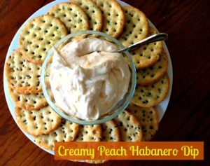 Creamy Peach Habanero Dip