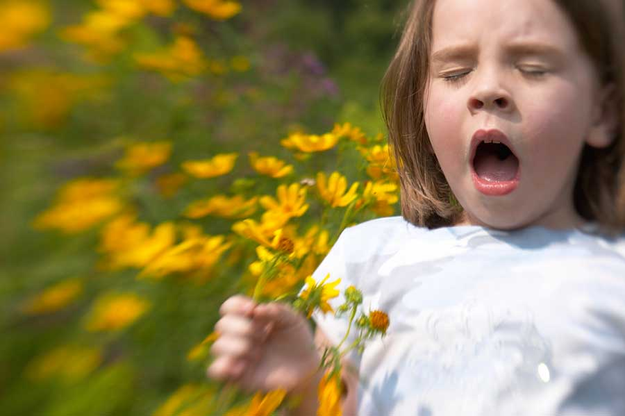 Four Steps to Alleviate Allergies