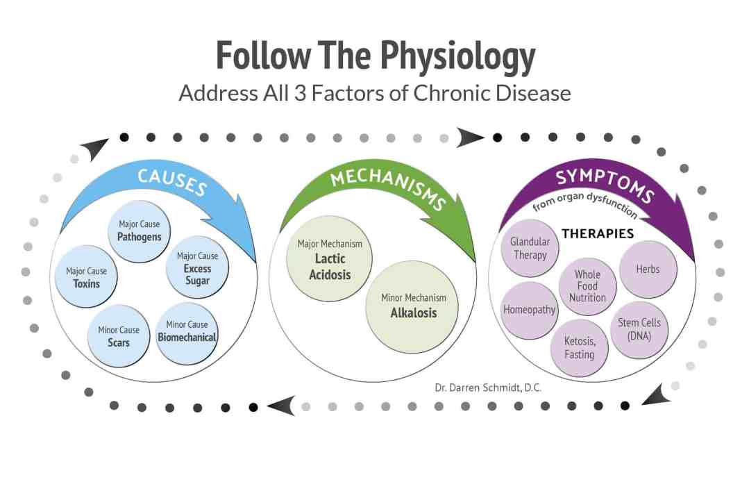 Folllow the physiology graph address all 3 factors of chronic disease