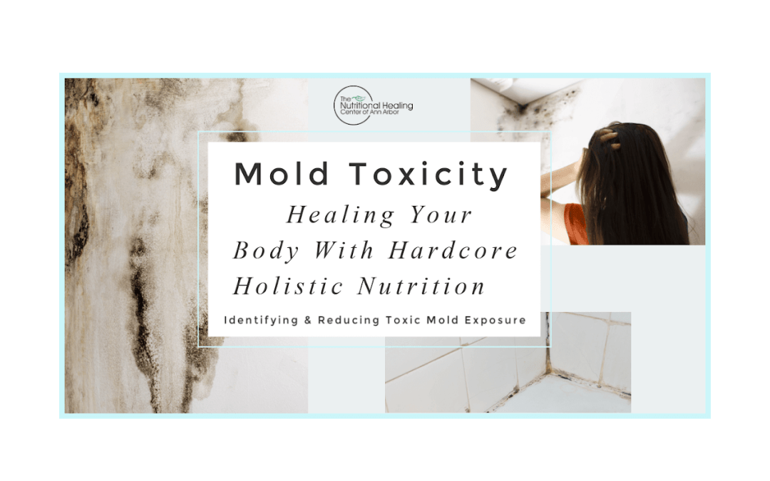 Mold Toxicity – What to do about it